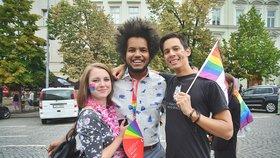 Změní nová Sněmovna přístup ke gayům a lesbám? Vstříc by jim vyšlo 82 poslanců