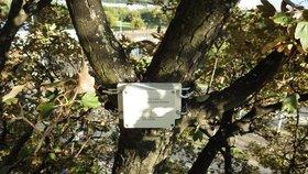 Záhadná krabička na stromě u metra Vltavská: Radnice vysvětlila, co umí