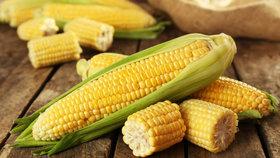 Vynikající kukuřice: Jak se pozná zralá? Nejlepší recepty, na kterých si pochutnáte!