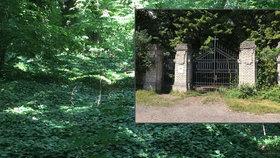 """Bohnický hřbitov bláznů nebude žádná """"opičárna"""". Radnice klidní obyvatele"""