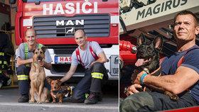 Hasiči pomáhají útulkům: Unikátní kalendář se sexy záchranáři podpoří pejsky v nouzi
