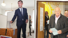 Volby ONLINE: Odvolil Babiš i Klaus. Češi rozhodují o budoucnosti země