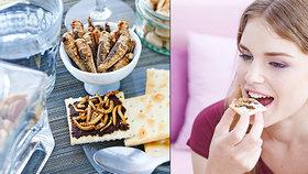 Finové si pošmáknou: Do prodeje tu vstupuje chléb upečený z hmyzu!