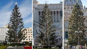 Pozdvižení v Římě: Vánoční stromeček se mění v opelichané torzo! Místní mu říkají »Prašivka«