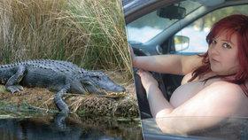 Nahatí řidiči, pokuta za neumyté auto i parkování aligátora: Jaké jsou silniční kuriozity?