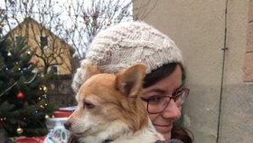 Dojemné setkání v psím hospici v Bukovince: Dorazil zástup přátel, všechny zajímá osud týraného Bena