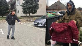 Vanesku (10) napadl toulavý vlčák: Zakousl se jí do krku!
