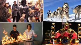 26 tipů na víkend: Královské klenoty, závody psích spřežení i překvapivé pokusy