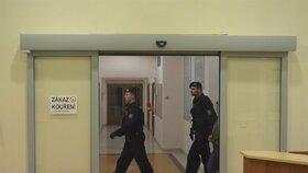 Policisté přivádí schizofreničku k soudu.