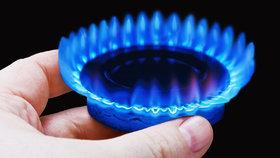 Proč dodavatelé nezlevní plyn? Když takhle prudce klesla cena na burze...