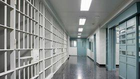 Němečtí vězni se mohou dobrovolně vrátit do vězení.