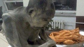 Mumie byla nalezena v Mongolsku