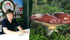 S mykologem na houbách: Klouzek proti rakovině