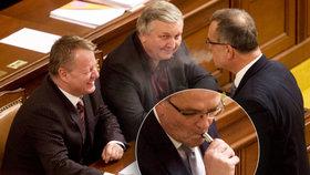 """Poslance čeká protikuřácký reparát. Němeček ustoupí """"vodnicím"""" a e-cigaretám"""