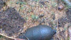 Houbař našel v lese místo hub granát ze II. světové války!