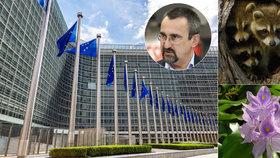 """""""EU překrucuje legislativu,"""" zuří kvůli mývalům Poc a brání svůj hyacint"""