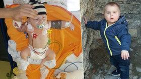 Špatná zpráva o nejstatečnějším miminku: Dominikovi (2) se vrátila zákeřná leukemie! Potřebuje kostní dřeň