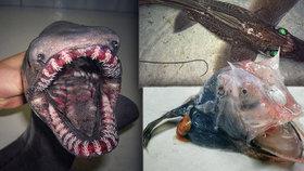 Peklo na dně oceánu: Rybář vylovil z moře nechutné stvůry