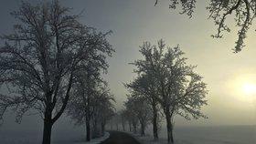 Blíží se konec zimy? V závěru února se oteplí, na jaro si ale ještě počkáme