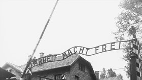 V Osvětimi objevili brož ve tvaru lístku na chleba: Důkaz největší lásky v pekle ghetta