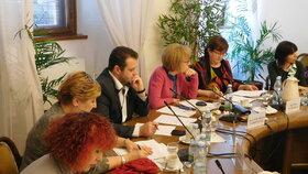 Seminář o trestném činu znásilnění proběhl pod záštitou poslanců Válkové (ANO) a Ondráčka (KSČM).