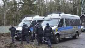 Policisté po oblevě prohledávají lesy na Kralovicku. Hledají pohřešovanou Míšu Muzikářovou.