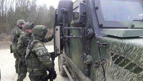 Česká armáda (ilustrační foto)