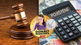 Děsí vás náklady na právníky? Soudní výlohy si můžete nechat pojistit
