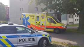 Muž okradl stařenku (77). Svědek vyběhl z balkónu a pomohl ho dopadnout