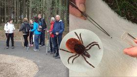 První testy pražských klíšťat: Nakaženého parazita hygienici odlovili v Kunratickém lese
