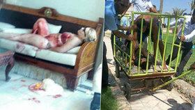 V egyptském turistickém středisku Hurghada neznámý útočník zaútočil s nožem na turisty.