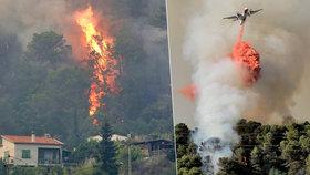Ve Francii shořely stovky hektarů lesa.