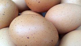 Země dotčené vajíčkovou aférou by se podle eurokomisaře Vytenise Andriukaitise měly přestat obviňovat.