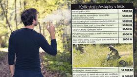 Kouření v lese ohroženo?