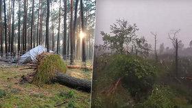 V táboře, kudy se prohnala ničivá bouře, zemřely v zavaleném stanu dvě skautky. Spadl na ně strom. Vpravo situace v okolí obce Suszek, nedaleko níž se tábor nacházel.