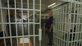 Otevřená věznice od pondělka v Česku: Vesnička bez dozorců, která připravuje trestance na svobodu