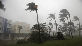 Hurikán Irma dorazil na Floridu.