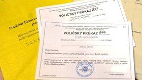 Voličský průkaz (Ilustrační foto)