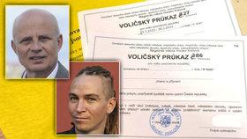 "Češi na volby stále častěji ""kašlou"". Politici se vytasili s voličskými průkazy i e-urnami"