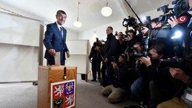 Andrej Babiš volil své hnutí ANO, využil i možnost preferenčních hlasů.