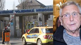 Jiří Menzel (79) po operaci mozku: Hrozí fatální následky! Slepota, hluchota, demence...