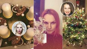 Zbláznili jste se, smějí se fanoušci: Bendová, Kristelová i Pazderková už mají Vánoce! Advent ale ještě nezačal