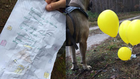 Polsko hledá Tomáška Slavíka z Česka: Jeho přání pro Ježíška doletělo na balonku až do Poznaně