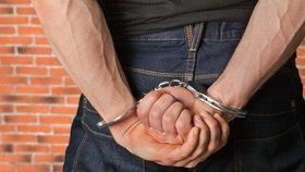 Čecha, který kradl starožitnosti, dopadla policie v Hondurasu: Skrýval se déle než rok!