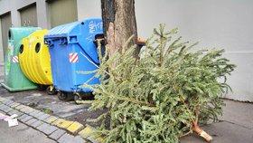 """Kam v Praze s vysloužilým vánočním stromkem? Do popelnice nepatří, """"naháči"""" se zpracují na kompost"""