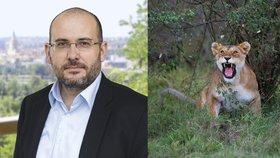 Cigárko v ruce a lev na vodítku: Experty děsí domácí chov šelem, hrozí útěk