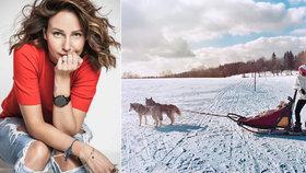 Veronika Arichteva šéfovala psímu spřežení! Navezla ji do toho Solaříková