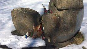 K pomníku v Letech dal někdo prasečí hlavu. Expert za tím vidí Okamuru a Zemana