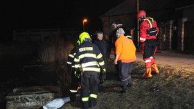 Chtěl si užít zimní radovánky, byly ale jeho poslední: Pejsek v Březiněvsi utonul pod ledem