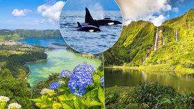 Zelený ráj na pohled: Azory vás uchvátí nadpozemskou přírodou